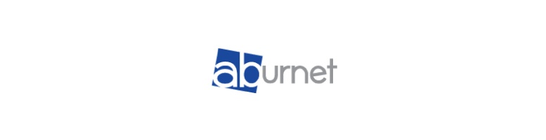 Aburnet Professional Hair Nets | Dennis Williams