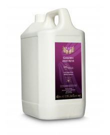Golden Mistress 6% Spray Tan Solution 4 Litre