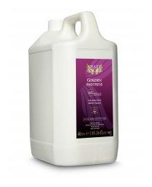 Golden Mistress 6% Spray Tan Solution 4 Litre
