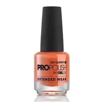 Gellux Pro Polish What A Picture
