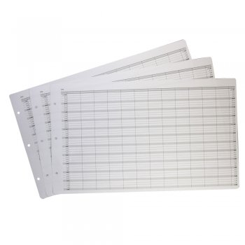 Misc Loose Leaf Refill 12 Columns