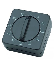 Standard Mechanical Timer