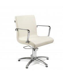 Ariel Hydraulic Styling Chair Colours