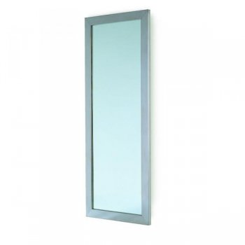 REM Vision Mirror Only
